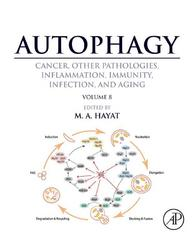 Autophagy: Cancer, Other Pathologies, Inflammation, Immunity, Infection, and Aging 1st Edition 9780128029527 0128029528