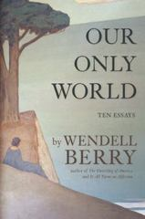 Our Only World 1st Edition 9781619027008 1619027003