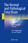 The Normal and Pathological Fetal Brain