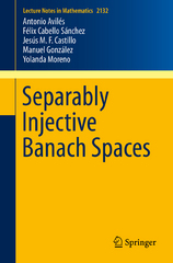 Separably Injective Banach Spaces 1st Edition 9783319147413 3319147412