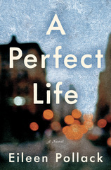 A Perfect Life 1st Edition 9780062419200 006241920X