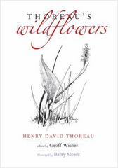 Thoreau's Wildflowers 1st Edition 9780300221015 0300221010