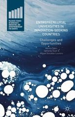 Entrepreneurial Universities in Innovation-Seeking Countries 1st Edition 9781137579812 1137579811