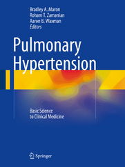 Pulmonary Hypertension 1st Edition 9783319235943 331923594X