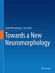 Towards a New Neuromorphology 1st Edition 9783319256931 3319256939