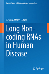 Long Non-coding RNAs in Human Disease 1st Edition 9783319239071 3319239074