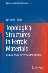 Topological Structures in Ferroic Materials 1st Edition 9783319253015 3319253018