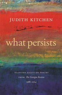 What Persists 1st Edition 9780820349312 0820349313