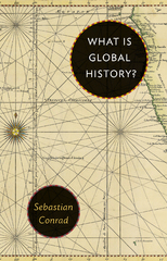 What Is Global History 1st Edition 9781400880966 1400880963