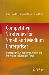 Competitive Strategies for Small and Medium Enterprises 1st Edition 9783319273037 3319273035