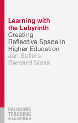 Learning with the Labyrinth 1st Edition 9781137393838 1137393831