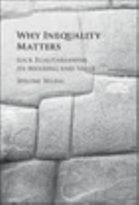 Why Inequality Matters 1st Edition 9781107129818 1107129818