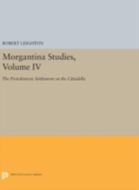 Morgantina Studies, Volume IV 1st Edition 9780691634500 0691634505