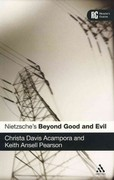 Nietzsche's 'Beyond Good and Evil' 1st edition 9780826473646 0826473644