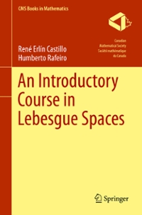 An Introductory Course in Lebesgue Spaces 1st Edition 9783319300344 3319300342