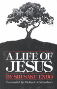 A Life of Jesus 1st Edition 9780809123193 0809123193