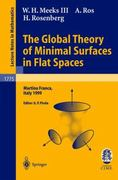 The Global Theory of Minimal Surfaces in Flat Spaces 1st edition 9783540431206 3540431209