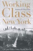 Working-Class New York 1st Edition 9781565847125 1565847121