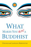 What Makes You Not a Buddhist 1st Edition 9781590305706 1590305701