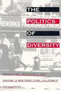The Politics of Diversity 0 9781566393287 1566393280