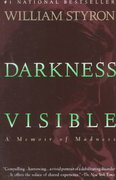 Darkness Visible 1st Edition 9780679736394 0679736395
