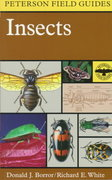 A Field Guide to Insects 2nd Edition 9780395911709 0395911702
