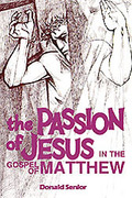 The Passion of Jesus in the Gospel of Matthew 1st Edition 9780814654606 0814654606