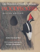 Life Histories of North American Woodpeckers 0 9780253311603 0253311608