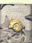 Fossils 0 9781403400918 1403400911