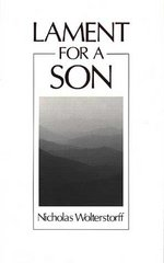 Lament for a Son 1st Edition 9780802802941 080280294X