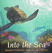 Into the Sea 1st edition 9780805022636 0805022635