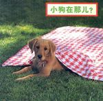 Where's the Puppy? (Simplified Mandarin) 0 9781932065671 1932065679
