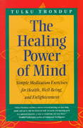 The Healing Power of Mind 1st Edition 9781570623301 1570623309