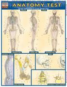 Anatomy Test 0 9781572225152 1572225157