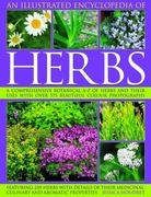 An Illustrated Encyclopedia of Herbs 0 9781844765461 1844765466