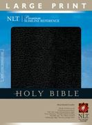 Holy Bible 2nd edition 9781414302287 1414302282