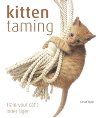 Kitten Taming 1st edition 9781592239863 1592239862