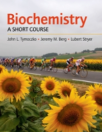 Biochemistry: A Short Course 1st edition 9780716758402 0716758407