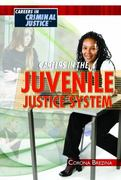 Careers in the Juvenile Justice System 0 9781435852679 1435852672
