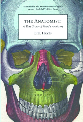 The Anatomist A True Story Of Gray S Anatomy 1st Edition Rent