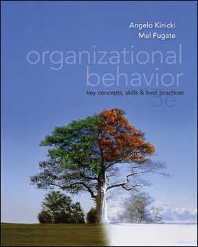 Organizational behavior key concepts skills best practices 5th organizational behavior 5th edition fandeluxe