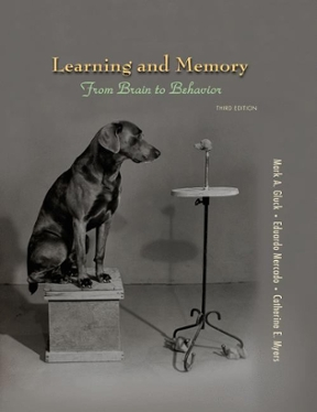 learning and memory gluck 3rd edition pdf free