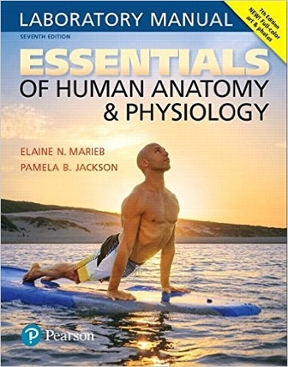Essentials of human anatomy physiology laboratory manual 7th essentials of human anatomy physiology laboratory manual 7th edition fandeluxe Choice Image